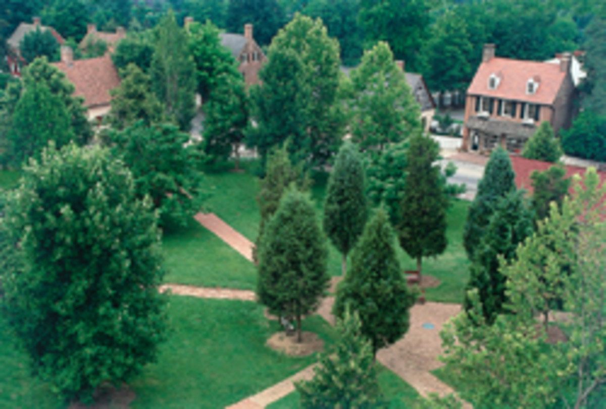 Old Salem and the Museum of Early Southern Decorative Arts will host the SAPFM's mid-year conference in June.