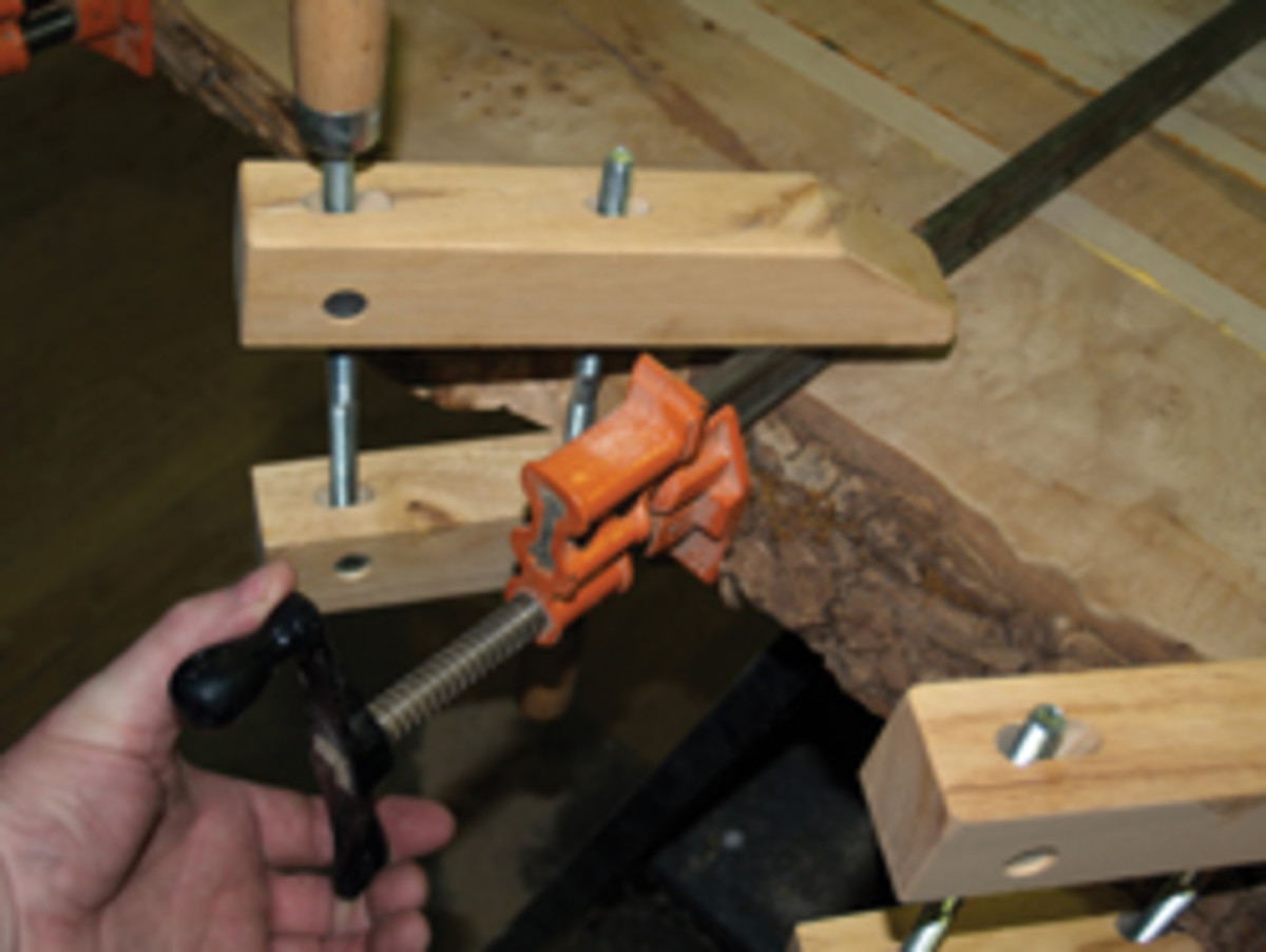 Leave the bark during glue-up to protect the sapwood.