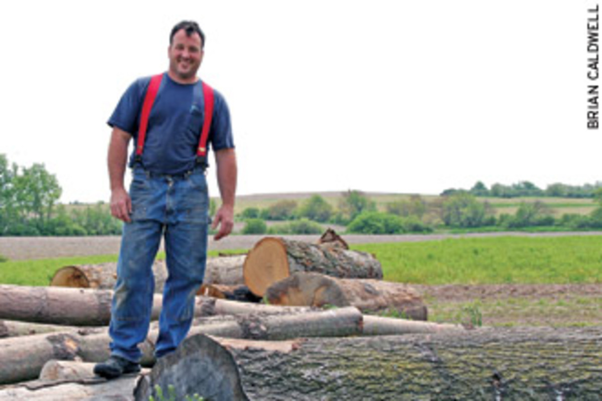 David Stine stands on some logs cut from his family's woodlands in Dow, Ill.
