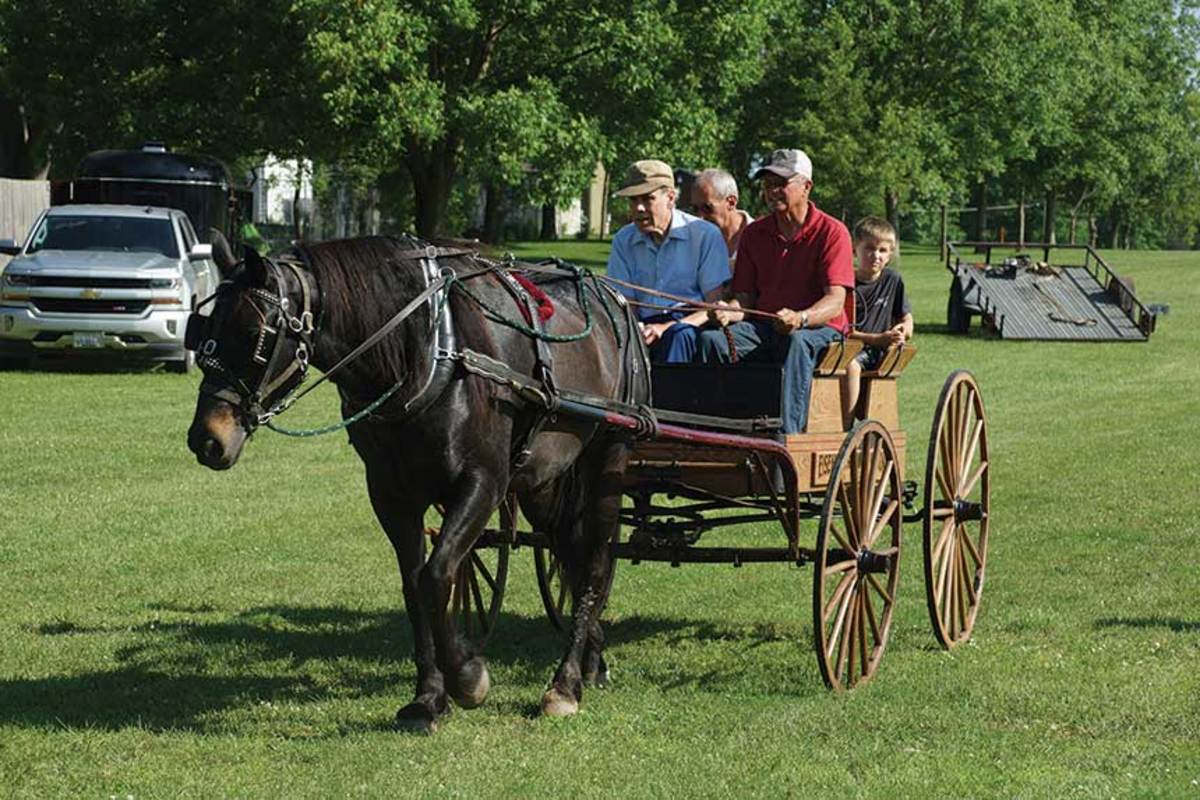A)-Horsedrawn-carriage