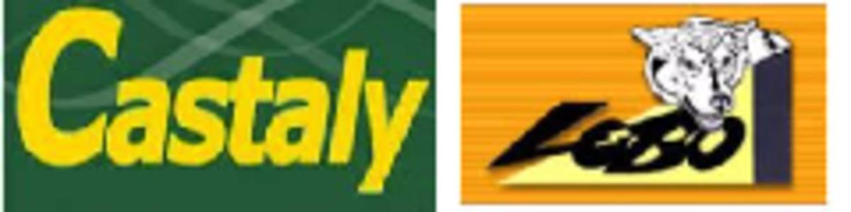 CASTALY   logo